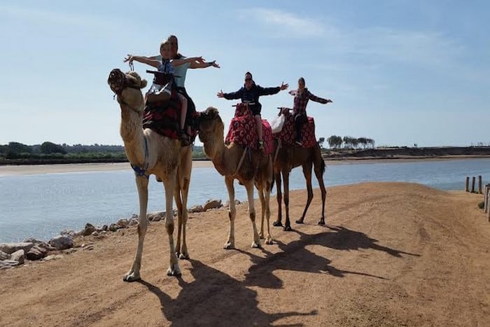 camel route blue waves morocco activities